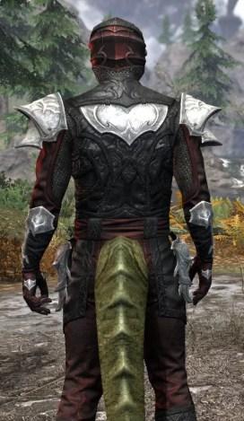 Nighthollow Light - Argonian Male Shirt Close Rear