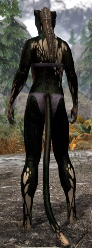 Void Pathosis - Khajiit Female Rear