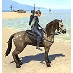Daggerfall Dapple Horse