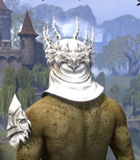 Baron Zaudrus - Argonian Male Rear