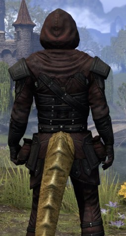 True-Sworn Light - Argonian Male Shirt Close Rear