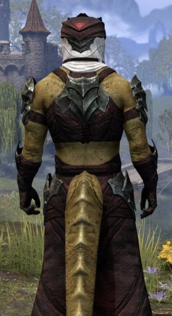 Waking Flame Light - Argonian Male Robe Close Rear
