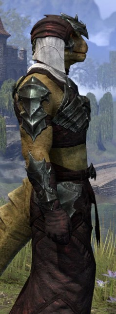 Waking Flame Light - Argonian Male Robe Close Side