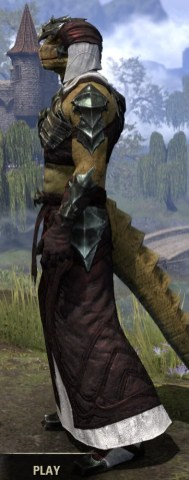 Waking Flame Light - Argonian Male Robe Side