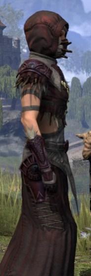 Wayward Guardian Ancestor Silk - Female Robe Close Side