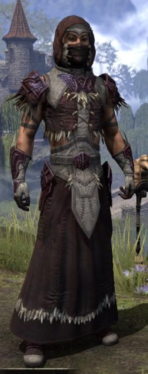 Wayward Guardian Ancestor Silk - Male Robe Front