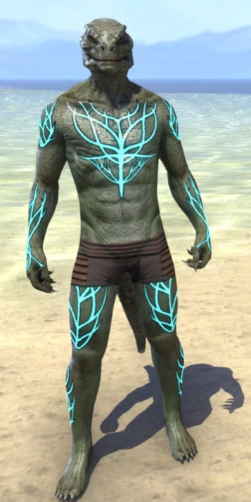 Blessed Life-Tree Body Markings - Argonian Male Front
