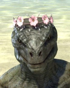 Cherry Blossom Anadem - Argonian Male Front