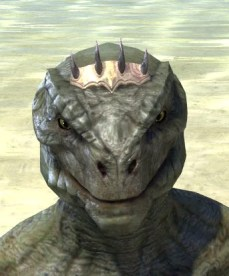 Dagon's Thorns - Argonian Male Front