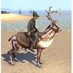 Falinesti's Faithful Totem Elk