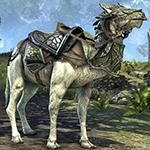 Nenalata Ayleid Camel