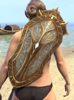 Regal Regalia Shield 1