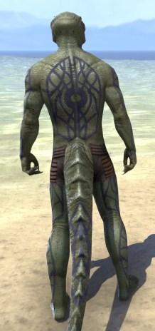 Saliache Scholar Body Markings - Argonian Male Rear