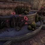 Desert Garden [EU]