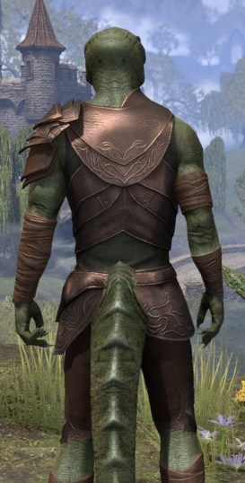Eveli's Adventuring Leathers - Argonian Male Close Rear