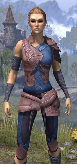 Eveli's Adventuring Leathers - Dyed Close Front