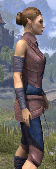 Eveli's Adventuring Leathers - Dyed Close Side
