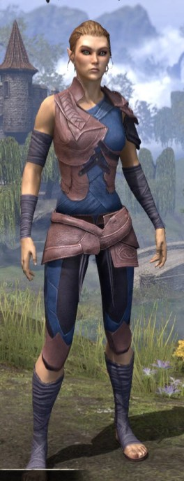 Eveli's Adventuring Leathers - Dyed Front