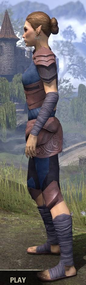 Eveli's Adventuring Leathers - Dyed Side