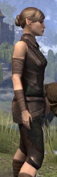 Eveli's Adventuring Leathers - Female Close Side
