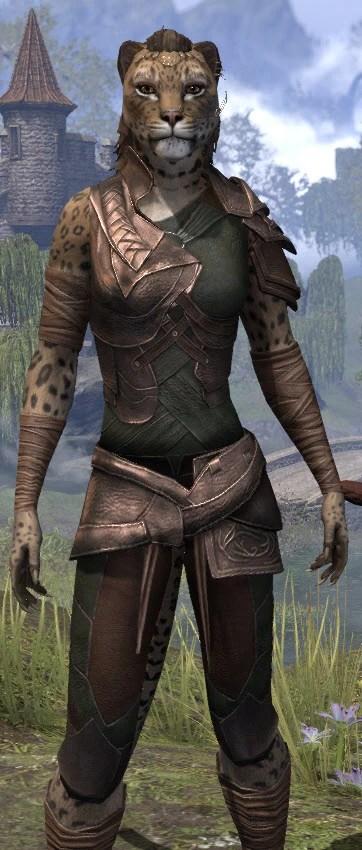 Eveli's Adventuring Leathers - Khajiit Female Close Front