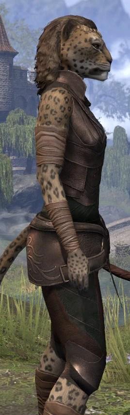 Eveli's Adventuring Leathers - Khajiit Female Close Side