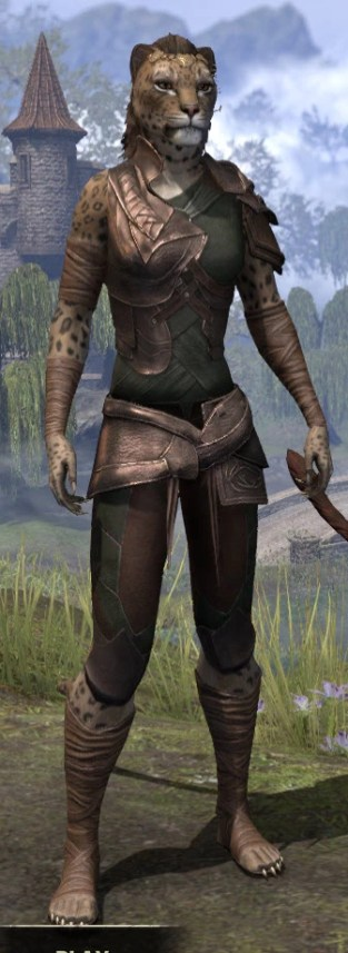 Eveli's Adventuring Leathers - Khajiit Female Front