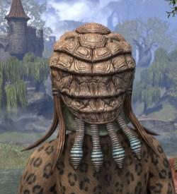 Netch Handler Cap - Khajiit Female Rear