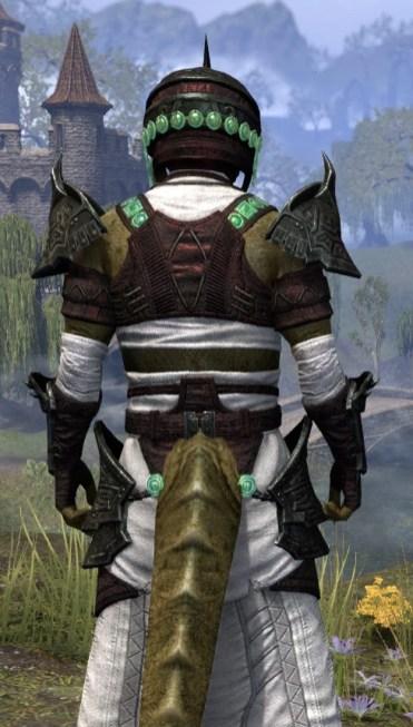Sul-Xan Light - Argonian Male Robe Close Rear
