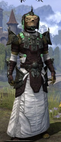 Sul-Xan Light - Argonian Male Robe Front