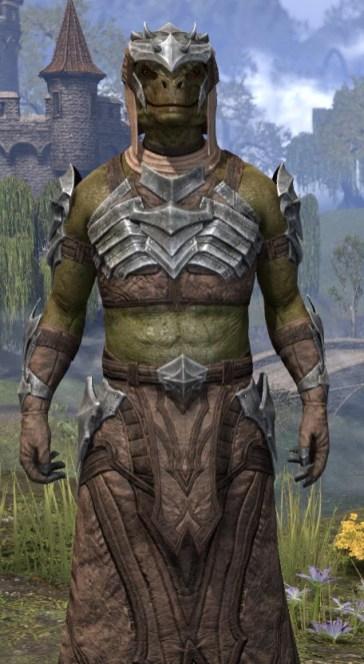 Waking Flame Homespun - Argonian Male Robe Close Front