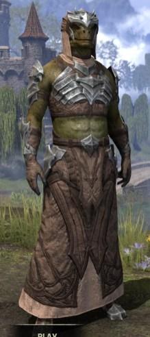 Waking Flame Homespun - Argonian Male Robe Front