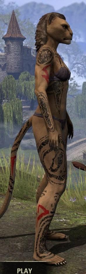Shattered Chivalry Body Tattoo - Khajiit Female Right