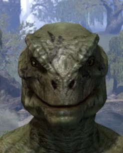 Shattered Chivalry Face Tattoo - Argonian Male Front