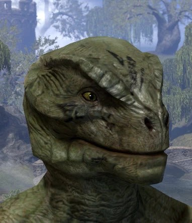 Shattered Chivalry Face Tattoo - Argonian Male Side