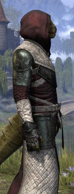 Silver Rose Light - Argonian Male Robe Close Side