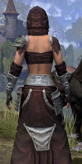 Crimson Oath Ancestor Silk - Female Robe Close Rear