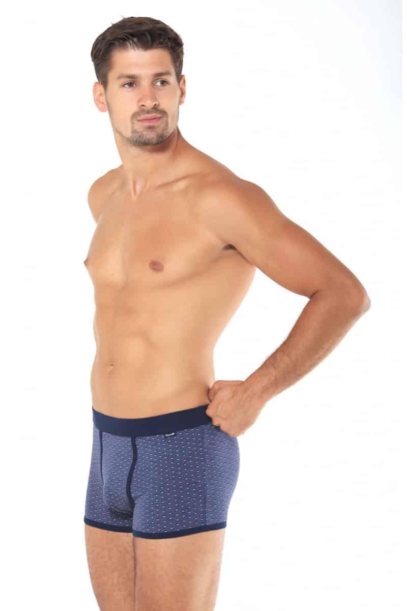 Male Boxer Roberto -