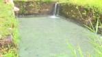 Les bains chauds de Matouba