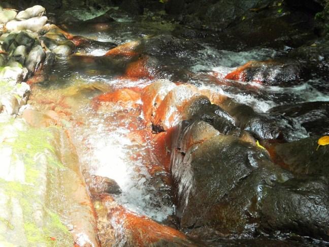 Les roches glissantes de la ravine