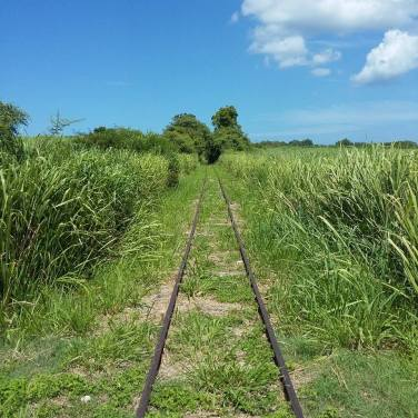 les-rails-de-chemin-de-fer-du-site