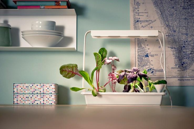 04 PH133366 IKEA indoor gardening