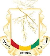 EXCLUSIVITE: PROJET DE NOUVELLE CONSTITUTION
