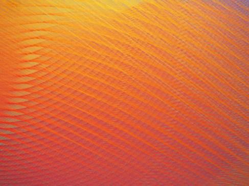 plexus arte con tela anaranjada