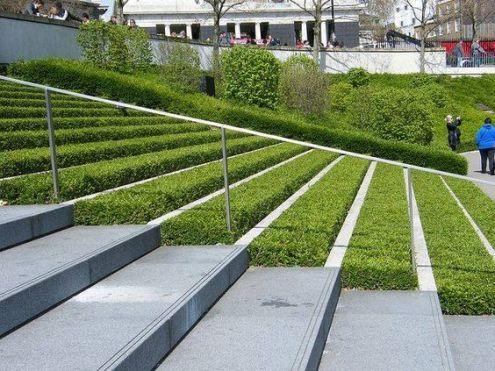 plantas y gradas arquitectura