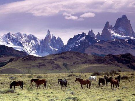 Descubri Patagonia
