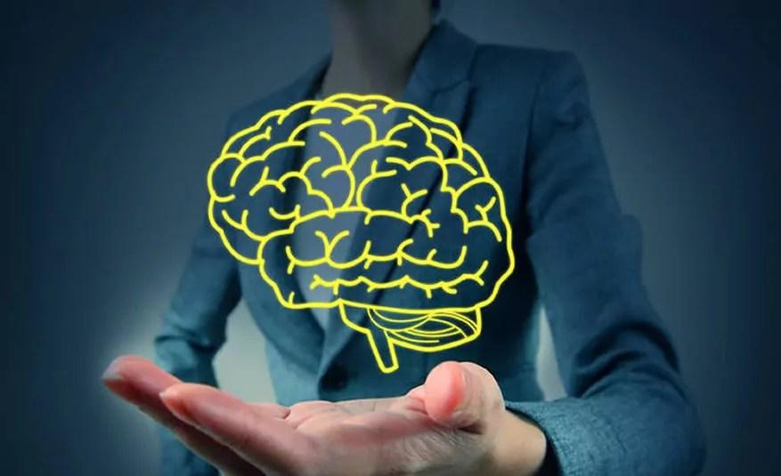 cerebro_estudos_neurociencia