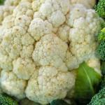 Brócoli: alimento medicina