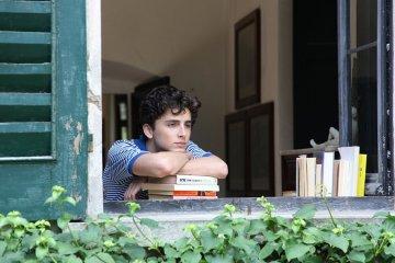 Elio Pearlman, interpretado por Timothée Chalamet