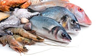 Resultat d'imatges de pescado